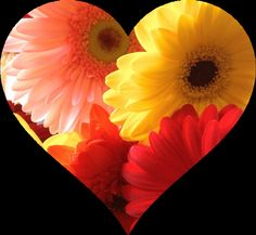 Loving With a Beautiful Bouquet of Words...a musing for Valentine's Day...