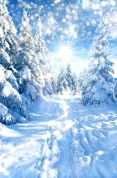 Winter Images, Winter Pictures, Christmas Pictures, Snowy Weather, Snowy Day, Snow Photography, Christmas Photography, Beautiful Fantasy Art, Beautiful Gif