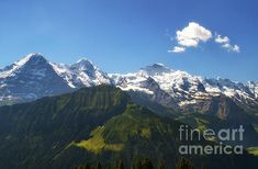 the triple peaks of Eiger Moench and Jungfrau by Michelle Meenawong Alpine Meadow, Horse Breeds, Bern, Some Pictures, Switzerland, Fine Art America, Nature Photography, Wildlife, Framed Prints