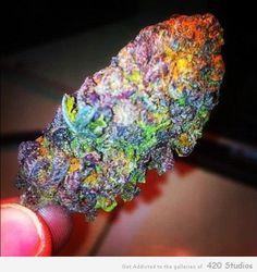 I didn't smoke nuthin, but i feel so high