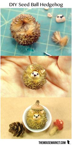 Learn how to make miniature hedgehogs from sycamore seed balls. #diy #naturecrafts