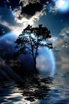 Stars twinkling in my imagination. Clouds float by as I sit in silence. Staring at the reflections magically warped on the water, illuminated by the glow of the moon. My heart flutters. Awed by the serenity.