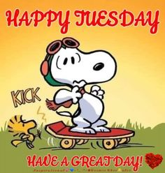 Time to rise and shine, and let's get this day started with a cup of coffee. Happy Tuesday Images, Happy Tuesday Quotes, Tuesday Humor, Tuesday Quotes Good Morning, Good Morning Happy, Morning Memes, Funny Good Morning Quotes, Morning Gif, Happy Weekend