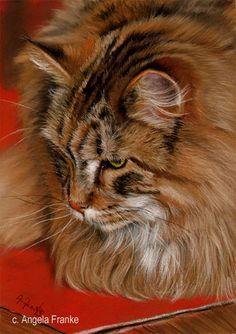 kitten Pastel Pastell 8 x 12