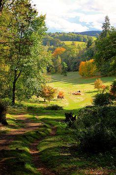 Winkworth Arboretum - Surrey, England