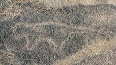 Rock Art at Kudopi (3) An Animal