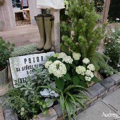 国際バラとガーデニングショウの画像 by Audreyさん   お出かけ先とアナベルとユーカリ ポポラスと国際バラとガーデニングショウ2018と国際バラとガーデニングショウとナチュラルガーデンと今日の一枚と雑貨好き♡とナチュラルスタイルとガーデニングと12月生まれ♪と花のある暮らしと大人かわいい♪ Garden Entrance, Garden Shrubs, White Gardens, Green Garden, Flowering Trees, Back Gardens, Garden Styles, Botany, Diy And Crafts