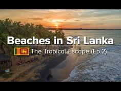 Let me show you our selection of the most beautiful beaches in Sri Lanka to know which spots you should put on the list for your visit!
