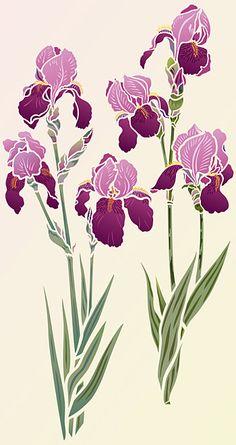 Iris Stencils 1 and 2