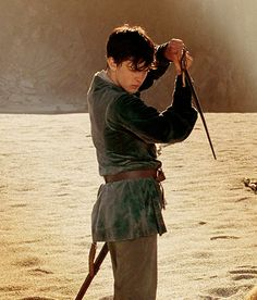 ...........this is from The Chronicles Of Narnia Prince Caspian!!!!