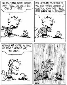 The vanity of humans by Calvin & Hobbes