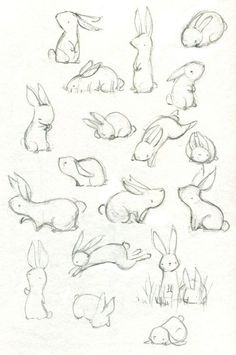 Art Drawings Sketches, Cute Drawings, Sketch Drawing, Drawing Ideas, Bunny Sketches, Drawing Tips, Sketching, Drawing Faces, Animal Sketches Easy