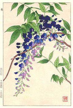 Wisteria, Blue, by Kawarazaki Shodo (published by Unsodo):