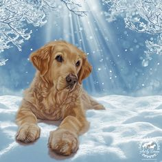20 x Golden Retriever Christmas Cards, Perfect Holiday Greetings Card for Goldie Lovers - All I Want For Christmas by ByDonnaUK on Etsy Dog Lover Gifts, Dog Lovers, Golden Retriever Art, Retriever Dog, Golden Retrievers, Dog Paintings, Dog Portraits, Winter Scenes, Dogs