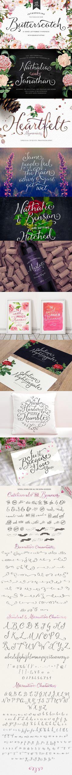 https://creativemarket.com/Nickylaatz/166895-Butterscotch-Typeface