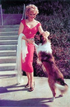 Marilyn Monroe wearing red dress from Niagara at a party for Bandleader Ray Anthony Marilyn Monroe Photos, Marylin Monroe, Most Beautiful Women, Beautiful People, Iconic Dresses, Norma Jeane, Looking Stunning, Old Hollywood, American Actress