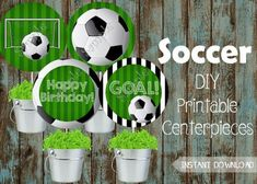 Soccer Centerpieces, Lady Bug Birthday Party Supplies