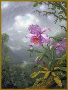 Browse through images in Beauty's Martin Johnson Heade collection. Martin Johnson Heade (August 1819 – September was an American painter known for his salt marsh landscapes, seascapes, and depictions of tropical birds (. Purple Iris Flowers, Pink Orchids, Art Flowers, Watercolor Flowers, Wild Flowers, Art Nouveau Wallpaper, Martin Johnson Heade, Hummingbird Painting, Orchid Plants