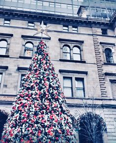 nyc girl merry little christmas christmas time dream city city lights time of the year new york city holiday decor stuff to do