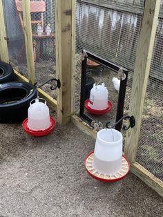 Chicken Barn, Diy Chicken Coop Plans, Chicken Life, Chicken Coop Designs, Backyard Chicken Coops, Chicken Runs, Raising Backyard Chickens, Keeping Chickens, Urban Chickens