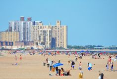 A Field Guide to the Rockaways