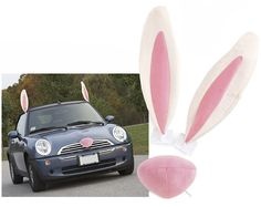 Easter Bunny Car Costume