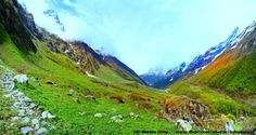 The Valley of Flowers National Park is located in Chamoli Garhwal, close to Nanda Devi National Park