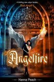 """(A Night Owl Reviews Top Pick: """"…incredible…loaded with romance, suspense, and totally unexpected twists and turns…"""" Angelfire is unrated on BN but has 4.4 Stars/72 Reviews on Amazon)"""