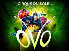 Cirque Du Soleil: OVO - London 2018#3