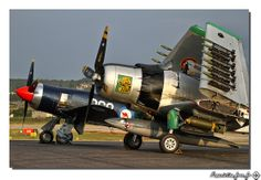 HEAVY METAL ~ AD-4 & Sea Fury share the ramp in Reno . . .