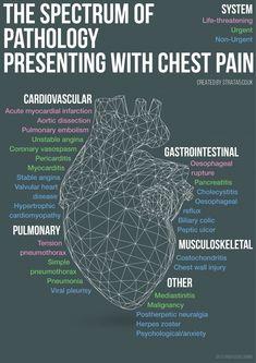 Spectrum of pathology presenting with chest pain Cardiac Nursing, Nursing Mnemonics, Nursing Tips, Nursing Notes, Nursing Programs, Funny Nursing, Respiratory Therapy, Emergency Medicine, Physician Assistant