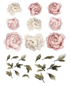 shabby chic  wall decals  wall decal  rockymountaindecals  rocky mountain decals  vinyl stickers  flowers decal flower decal  flower wall decals  floral wall decals  lilac peonies  watercolor leaves  wallpaper wall paper