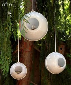cute bird feeders