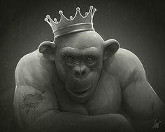 2013 - King of Kings - Grafická Chirurgie / Surgery Minor