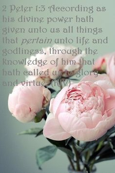 2 Peter 1:3 (KJV)