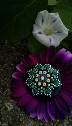 Hand Painted Rock - Magenta & Ocean Green Flower Mandala ~ Dot Art ~ Original Colorful Ornaments by P4MirandaPitrone on Etsy