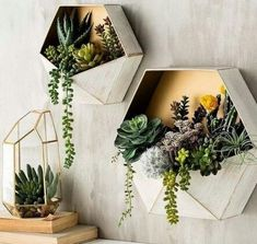 25 Inspiringly Stylish DIY Bohemian Bedroom Decoration Ideas To Copy. diy bohemian bedroom Check out these beautiful DIY Bohemian bedroom decoration ideas that you can make easily and cheaply! Pick the best one and style up your bedroom now! Succulent Wall Art, Succulent Planters, Vertical Succulent Gardens, Cacti Garden, Hanging Succulents, Bohemian Bedrooms, Deco Floral, Home And Deco, Home Decor Trends