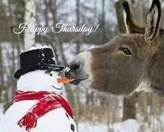 Medicines Mexico @Medicines Mexico Jan 9 May this snowy Thursday bring you happiness to your life #MedicinesMexico #Snow #Thursday #Happiness