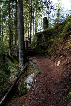 A perfect stop along Highway 97 Trail name: Sicamous Creek Distance: The Falls - kilometres Canyon Lookout - 2 kilometres West Coast Living, Hiking Trails, British Columbia, Rivers, Roads, Photo Credit, Paths, Distance, Road Trip