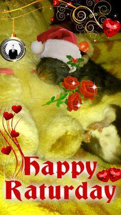 happy raturday