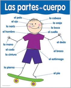 Teach your kids the parts of their bodies in Spanish!