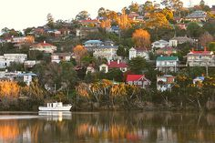 Beautiful Suburban Launceston, viewed from the Tamar River - take a cruise to see it for yourself. Visit Tasmania.