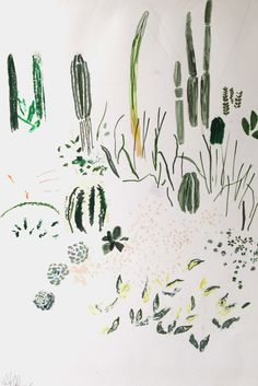 Kew Cacti House Drawing by Alicia Galer, for sale at The Garden Edit