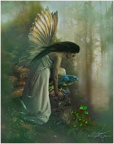 Fairy.over lookin nature