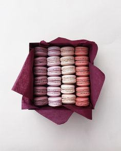 Macarons are the perfect dessert. They are small but so tasty so you don't feel too full after snacking on a few. Delicious Desserts, Yummy Food, Tumblr Food, Cafe Food, Aesthetic Food, Food Cravings, Food Inspiration, Cookies Et Biscuits, Sweet Tooth