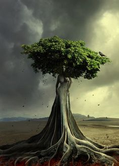 AstroSpirit Tree of Life Art / mother earth goddess Trucage Photo, Photo D Art, Tree People, Earth Goddess, Photomontage, Surreal Art, Tree Art, Tree Of Life, Photo Manipulation