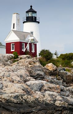 Pemaquid Light and Exposed Granite Bedrock, Pemaquid Point, New Harbor, Maine (7573) | by John Bald