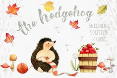 The Hedgehog - Mini Collection by Watercolor Nomads on @creativemarket