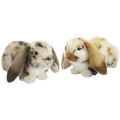 Dutch Lop Eared Rabbit Soft Toy Assorted Designs *** Be sure to check out this awesome product. (This is an affiliate link) #StuffedAnimalsPlushToys