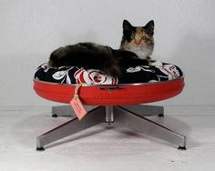 office chair cat bed